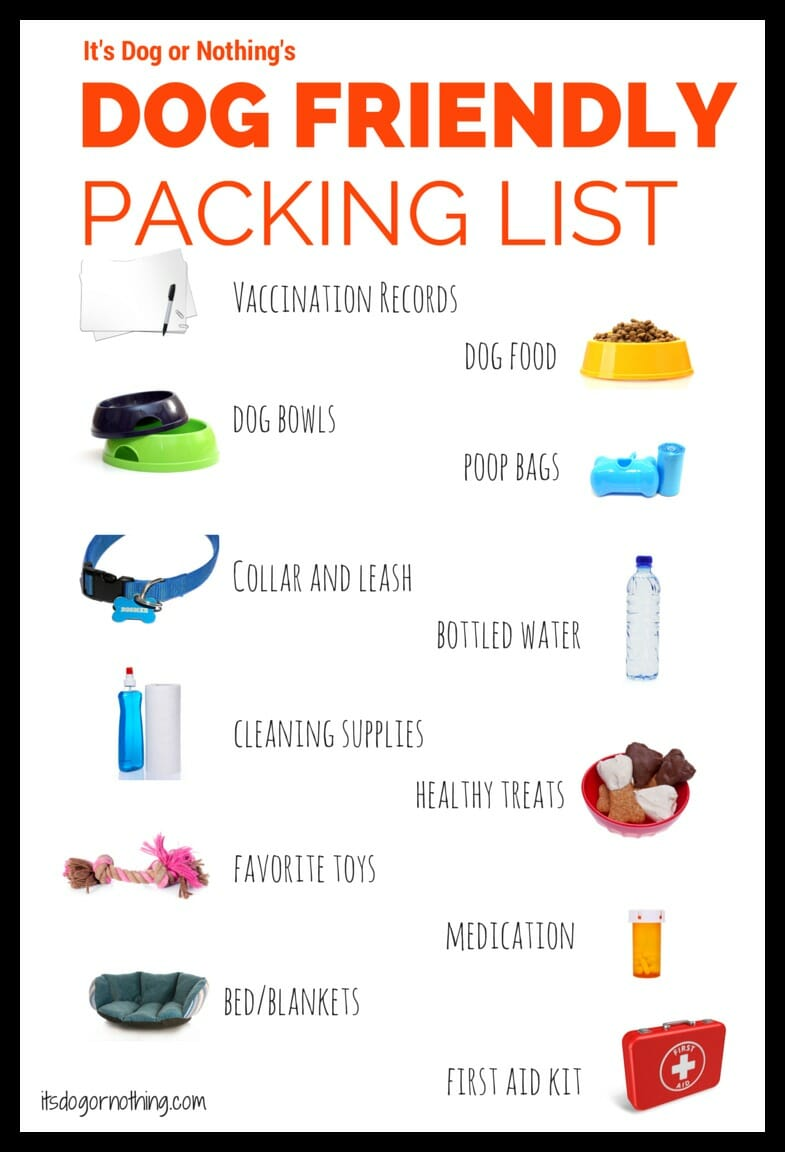 list for traveling