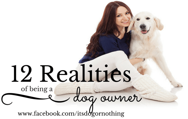 12 Realities of Being a Dog Owner