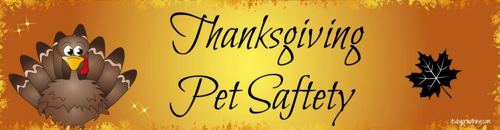 It's Dog or Nothing Thanksgiving