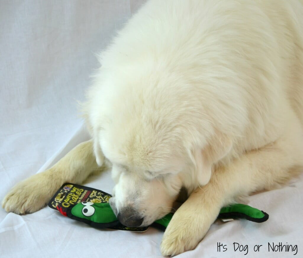 Great Pyrenees Bow Wow Toy