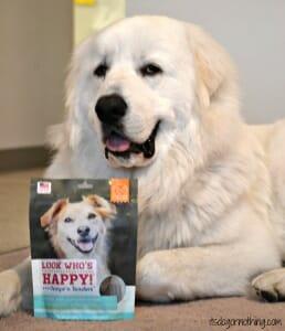 Look Who's Happy, Atka!