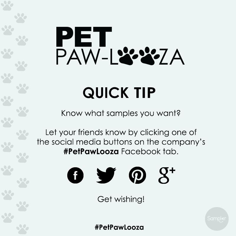 PetPawLooza_QT_WishForIt