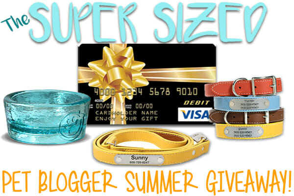 Super Sized Pet Blogger Summer Giveaway