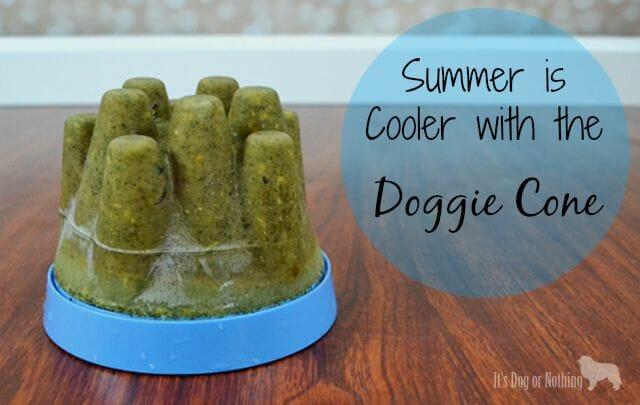 Doggie Cone