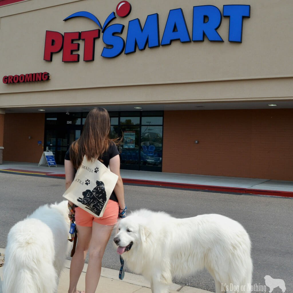 Great Pyrenees at PetSmart with a custom Tote Tails bag