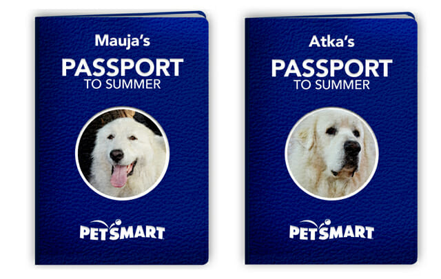 Mauja and Atka's Passports to Summer
