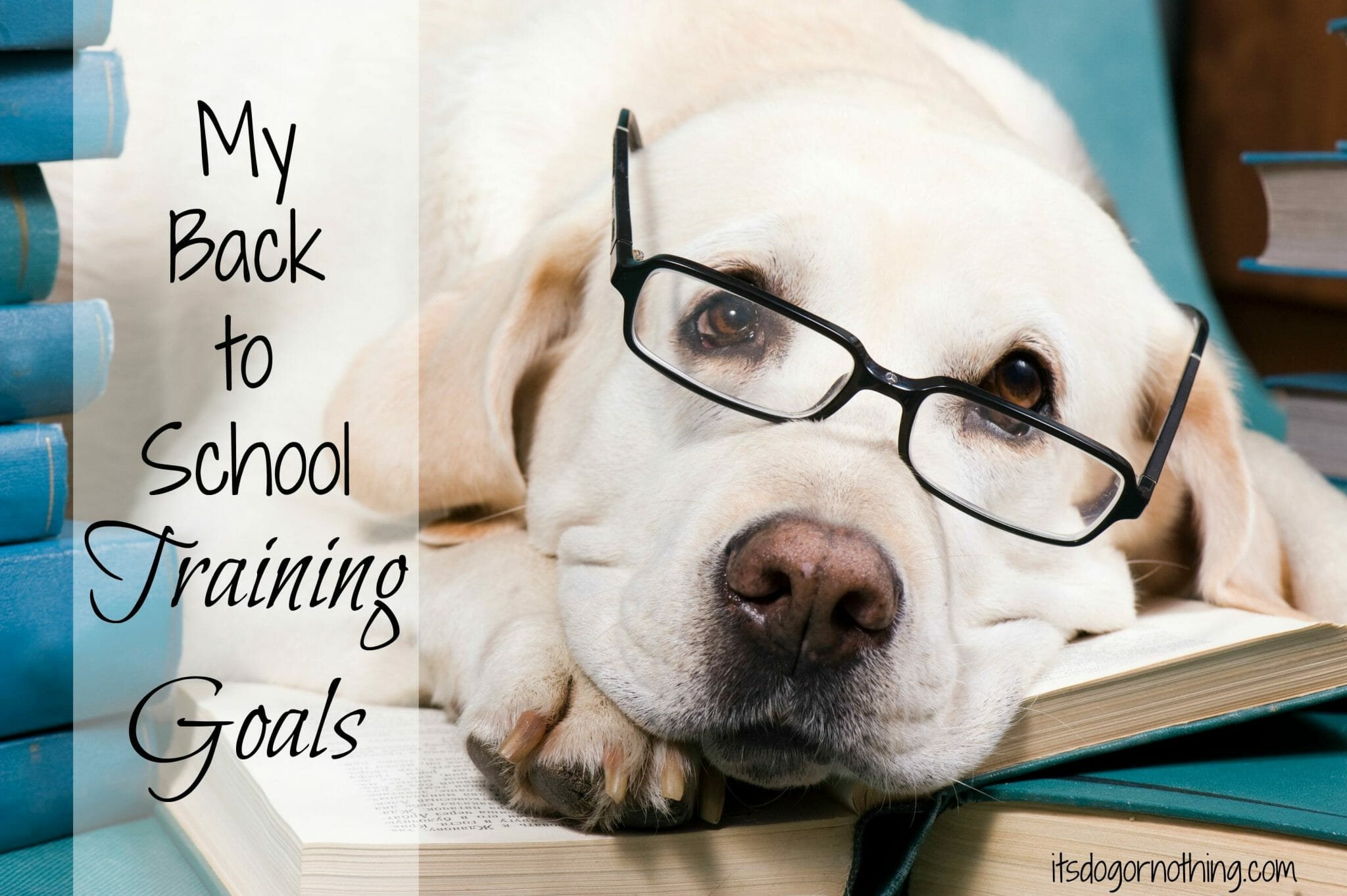 Back to School Training Goals