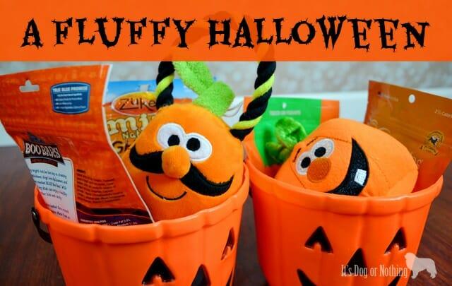 A Fluffy Halloween