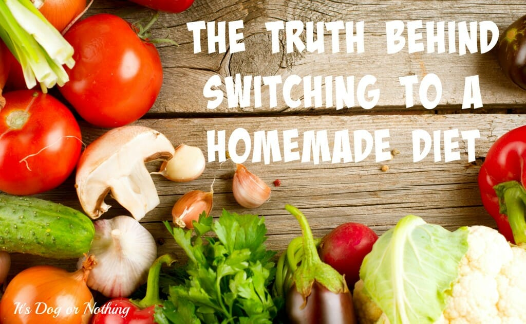 So many people told me that switching to a homemade diet would be so easy. Well, I think they were lying. Here's the truth behind switching from dry food to fresh, home-cooked meals.