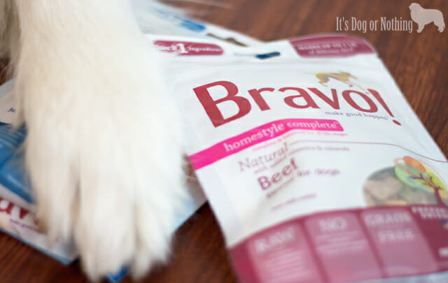 Pet Paw-Looza | Bravo Pet Food with Great Pyrenees