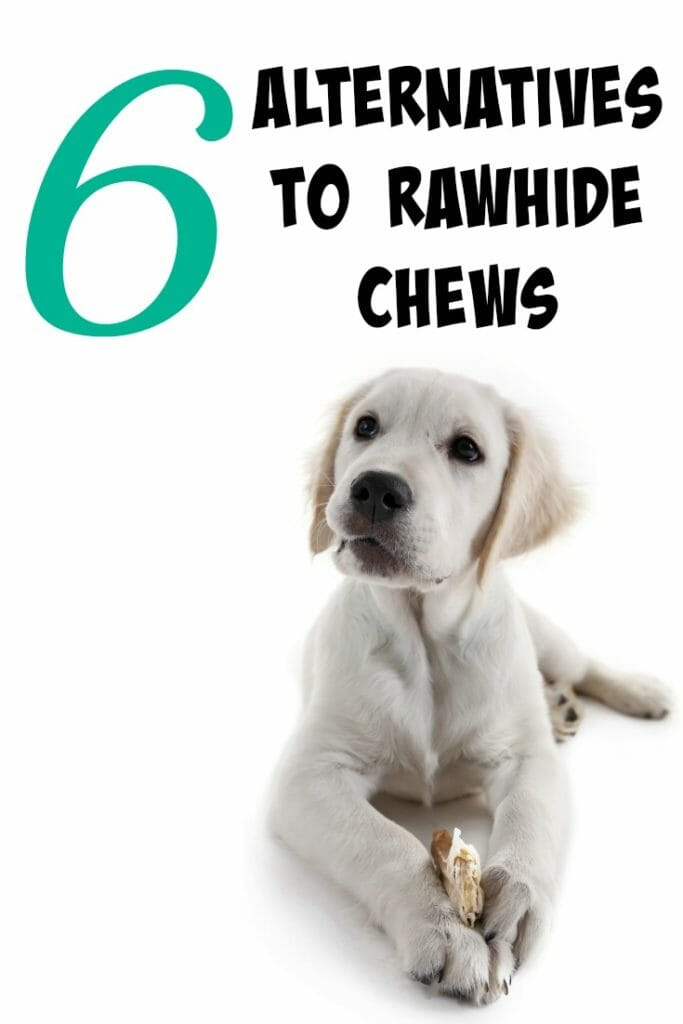 Are you ever struggling with how to keep your dog busy? With all the negatives to rawhide, we had to find another outlet for the dogs to chew. Click through to see our 6 alternatives to rawhide chews.