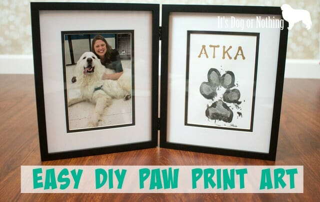 Have you ever wanted something special to remember or celebrate your pet? Check out this super easy tutorial to create your own paw print art!