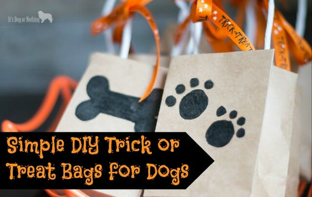 Simple DIY Trick or Treat Bags for Dogs