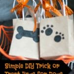 Want to include your furry friend in the Halloween festivities? Try these simple DIY Trick or Treat bags for dogs!