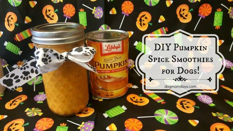 pumpkin-spice-1