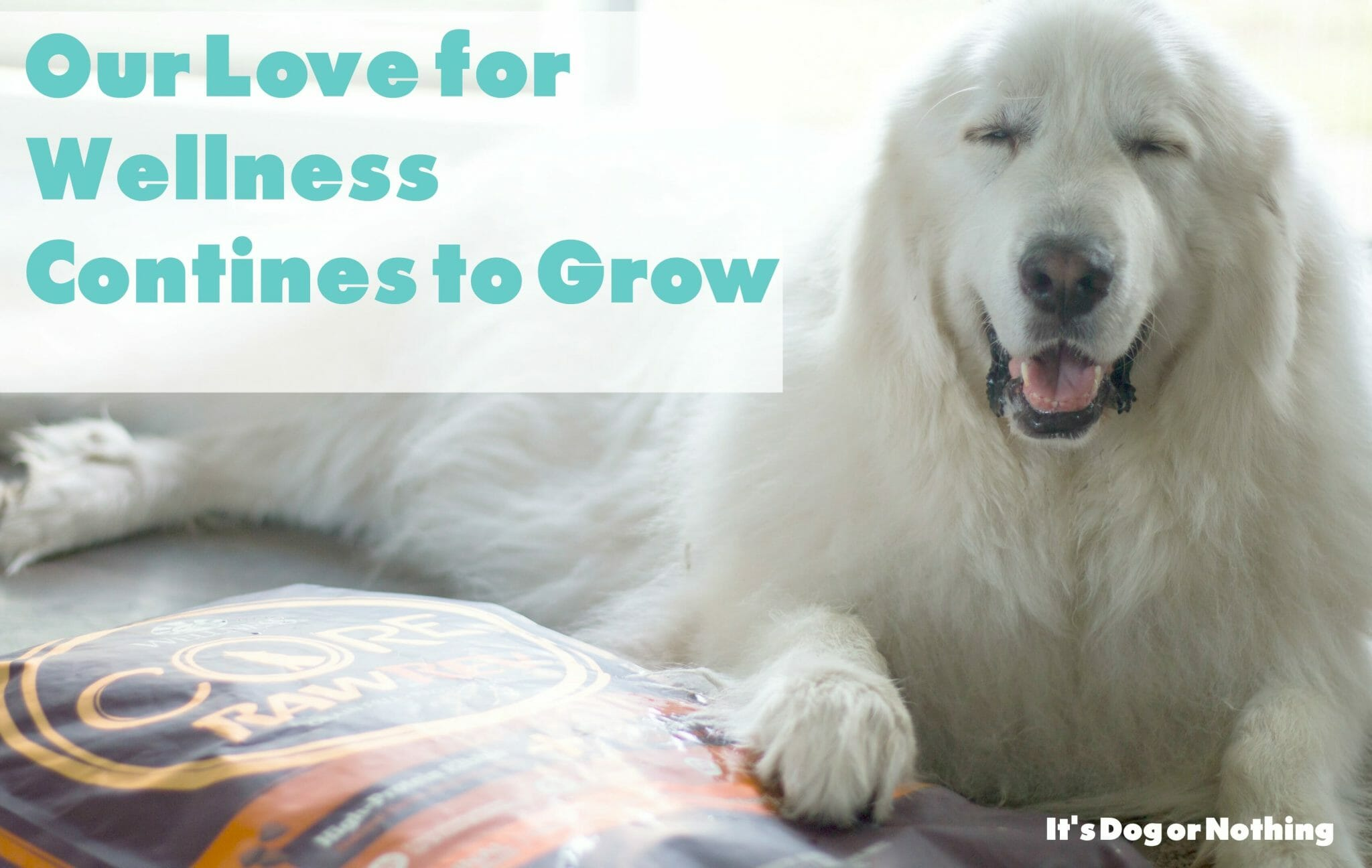 Our Wellness Love Grows with CORE RawRev