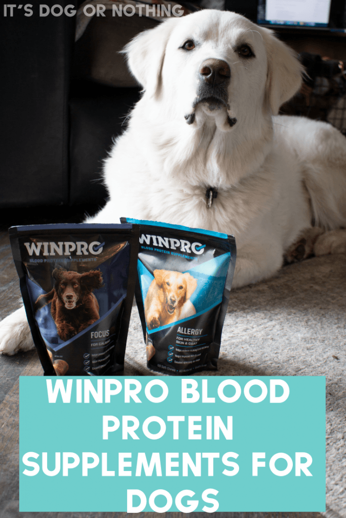 WINPRO Blood Protein Supplements are nature's best weapon against inflammation. They can help with immunity, focus, mobility, training, and allergies. We tested Focus for Mauja's anxiety and Allergy for Kiska's skin issues.
