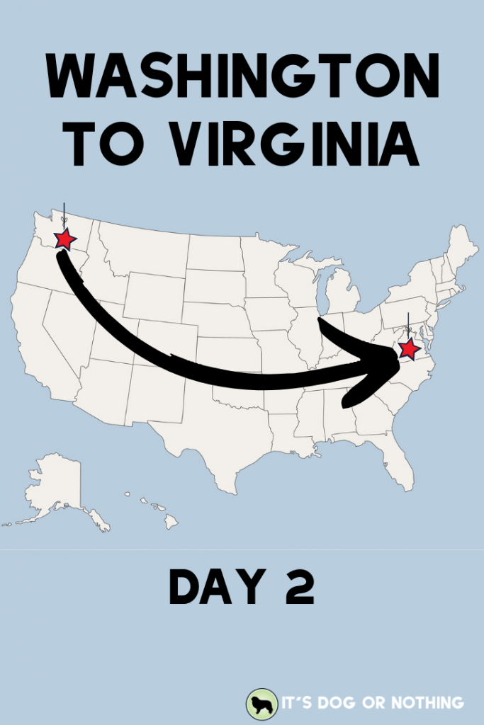 A recap of day two of our move from Washington to Virginia with four Great Pyrenees and a cat! | It's Dog or Nothing