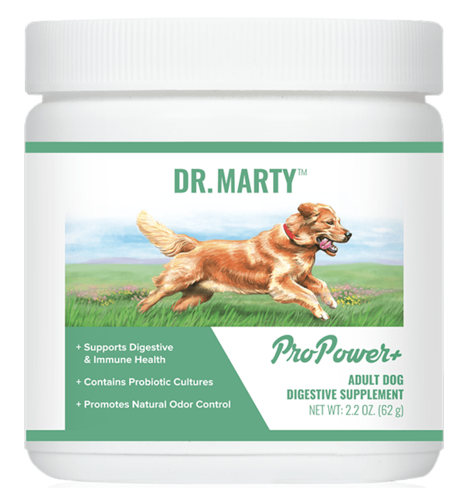 The Great Pyrenees at It's Dog or Nothing love Dr. Marty's ProPower Plus for optimal gut health.