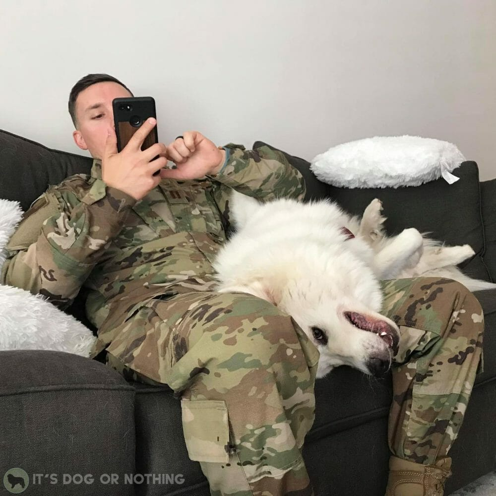 Great Pyrenees and man in Air Force uniform